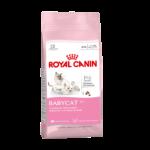 ROYAL CANIN Babycat 34 x 0,4 y 2 kg