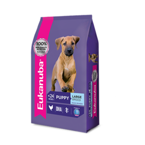 Eukanuba Puppy Large Breed x 3 y 15 kg