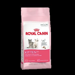 ROYAL CANIN Kitten 36 x 0,4 – 2 y 7.5 kg