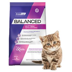 Balanced Gato Kitten x 0,4  2 y 7,5 kg